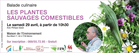 lesplantessauvagescomestibles_plantes.png